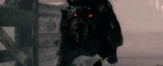 Perros negros-fantasma