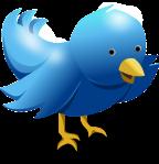 Twitter fenómeno
